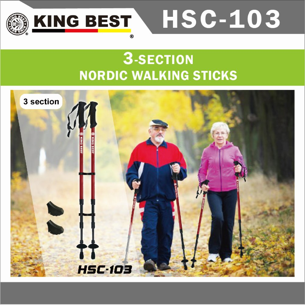 KING BEST 2016 Wholesale Carbon trekking pole 2-SECTION adjustable folding hook walking stick