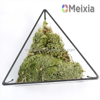 MX130000-01 Plant Holder Decorative Natural Moss for Home Decor Wholesale