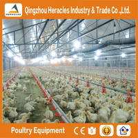 Heracles Good Quality Poultry Equipment For