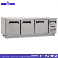 Stainless Steel Under Counter Refrigerator Industrial