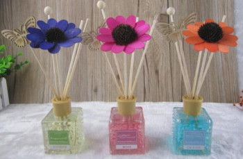 Essential Oil Health Plants Reed Diffuser Gift Set Cheaper Wholesale