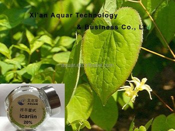 High Quality Free Sample Epimedium Sagittatum Extract Powder for Women Aphrodisiac