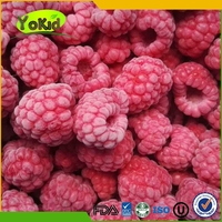 Fruits Frozen Raspberry cultivated frist quality