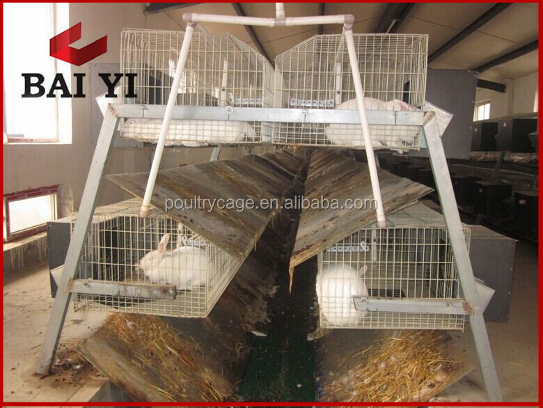 Commercial meat rabbit farm cages