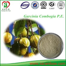 factory supply organic garcinia combogia p.e. with high quality
