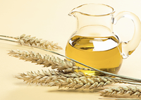 Wheat Germ Oil/Wheat Seeder Extract/Wheat Bran Extract