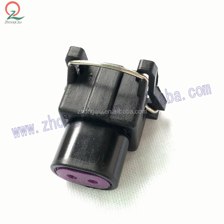 Delphi 2pin Ev1 Female Waterproof Electrical Automotive Connector 12129142