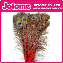 Factory wholesale best quality dyed artifical peacock feather