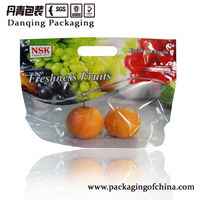 Danqing printed Fruit Vent Bag with zipper