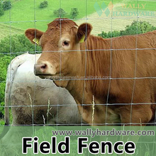 china manufacture galvanized sheep wire mesh fence