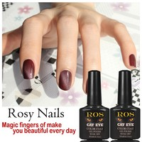 Nail Art Supply Samples Cat Eye Gel Polish for Salon