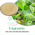 supper Green Tea Extracts 98% Polyphenols / 50% EGCG