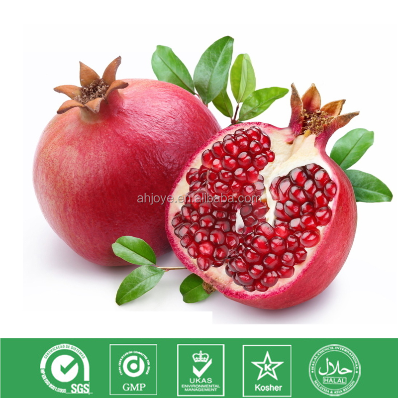 Natrual plant extract powder Pomegranate P.E. for antioxidant and whitening