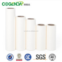 Packaging Film Usage & Laminate Type Printed Film