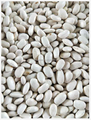 2016 Small size White Kidney Beans to Southeast Asian, White Kidney Beans HPS