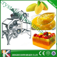 Known price of mango pulp/fruit pulp extractor machines/mango pulp manufacturing process