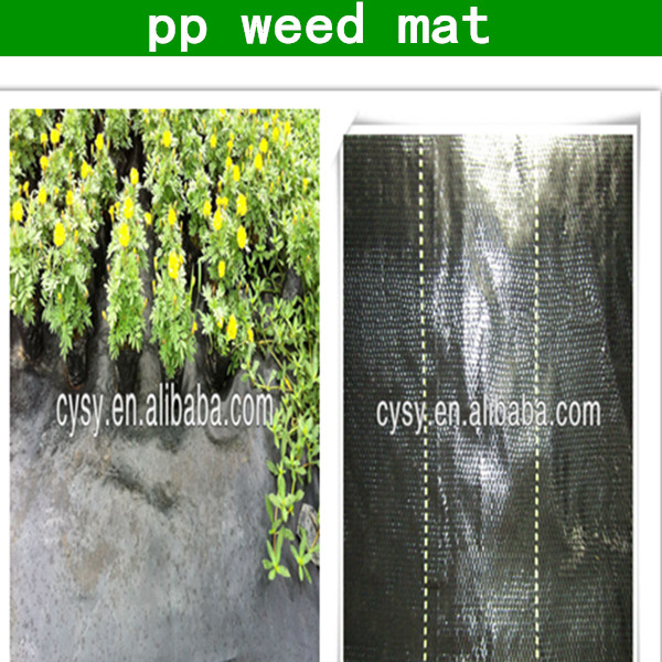 High quality perforated agricultural plastic mulch film with hole punch