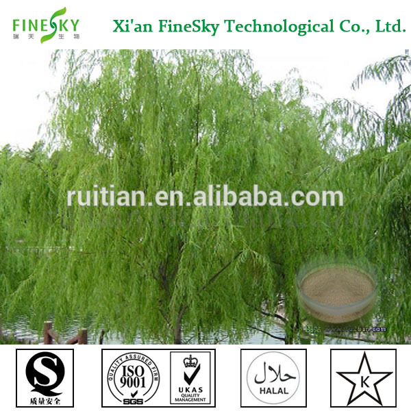 Top quality 100% natura white willow bark extract