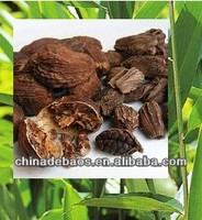 Factory supply pure natural herbal Epimedium extract with Icariin 10% 20%
