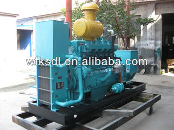 CNG natural gas generator for sale