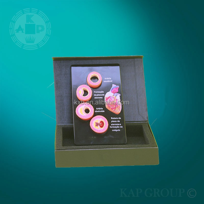 Medical promotional gift model of anatomy blood model with great price