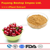 Zhen Ye Ying Tao China Supplier Provide Best Quality Acerola Cherry Extract