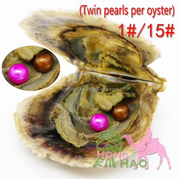 Wholesale mix 1 # / and 15 # different colors 6-7 mm AAAA round twins freshwater pearl oysters individually packaged, great part