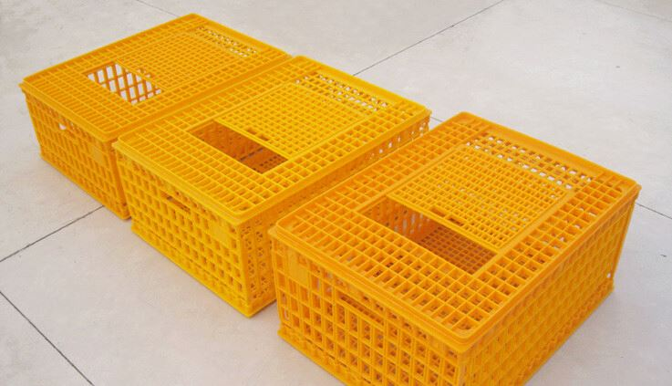 Plastic chicken transfer cage for poultry