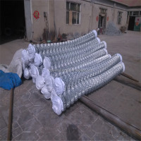 best material good quality galvanized weave chain link fence 45mm*45mm size hole diamond wire mesh