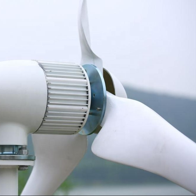 Customized Voltage 96v 48v Wind Turbine <strong>1</strong> kw