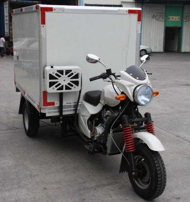 New style excellent quality best cargo trike three wheel motorcycle