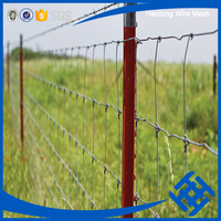 anticorrosion anti-aging galvanized sheep/farm/field/deer wire mesh fence(hot sale)