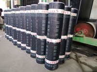 -15-130deg C 4mm app modified bitumen sheet waterproofing membrane