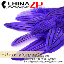 CHINAZP Factory 30-35cm Length Top Design Silver Pheasant Dyed Purple Feathers