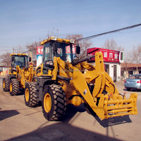 (0.4T,0.8T,1T,1.2T,1.5T,1.6T,1.8T,2T,3T)CE payloader
