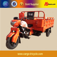 Heavy Loading Three Wheel Cargo Motorcycles/Adult Three Wheel Scooter/Tricycle