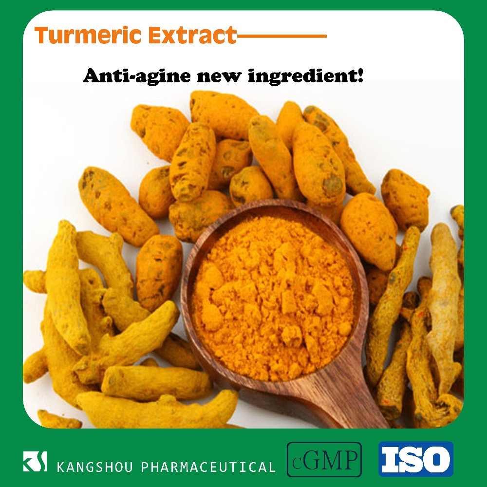 High quality Anti-aging ingredient Turmeric root extract powder 95% Curcumin