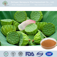 High Quality Semen Nelumbinis P.E. from Lotus Nuciferine 10%-99%
