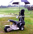 electric golf cart(SX-E0906-3A)