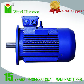 Rare earth permanen magnet three-phase synchronous motor