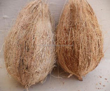 pollachi fresh coconut for best sale