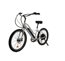 best sller sand bicycle electric beach cruiser bike 48 volt for sale