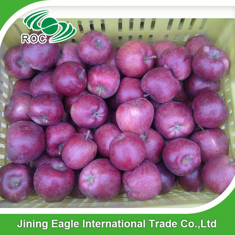 Hot sale fresh tianshui huaniu apple