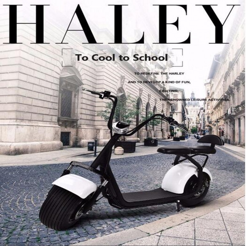 Pleasedin Interesting 2016 hot sale citycoco 1500W fast delivery electric scooter motorcycle