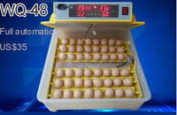 CE approved chicken egg incubator hatching machine weiqian 48 incubator