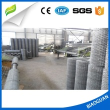 Anping high quality galvanized Hexagonal wire mesh /Chicken coop wire netting manufacturer