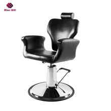 Different Models Of luxury styling chair salon furniture