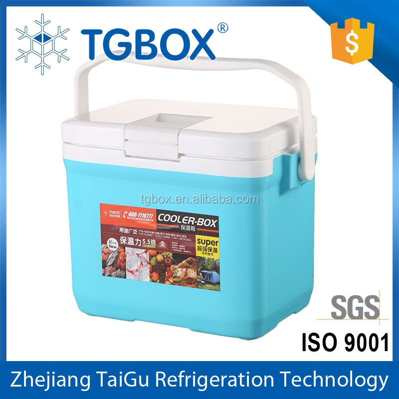 dailyuse 10L Plastic ice Cooler Box with handle Small Outdoor Ice Chest