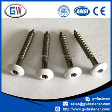 Grey Black White painted head screw