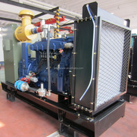 8-1000kw hot sales bio gas power generators